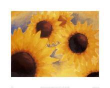 Sunflowers  Art Print - Patrick Ciranna