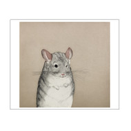 Mouse Small Boxed Notecards
