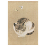 Sleeping Cat and Butterflies Boxed Notecards
