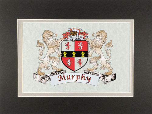 "Irish Coat of Arms Print - Frameable 9"" x 12"""