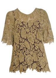 pretty angel Brown Sheer Lace Top