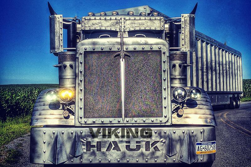 vikinghauk.png