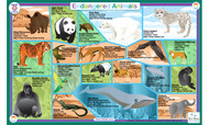 Endangered Animals Placemat