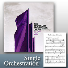 I'll Sing Of Your Love (Orchestration)