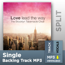 Love Lead The Way (Single Split Track MP3)
