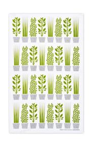 Jangneus - Swedish Tea Towels - Herbs - Green - 100% cotton