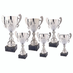 TW20-052-771FG / Silver Presentation Cup With Handles