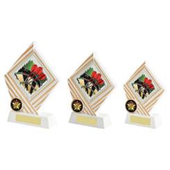 TW20-074-1070ZCPG / White/Gold Resin Diamond Darts Award