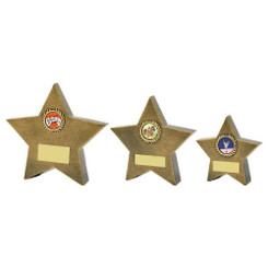 TW20-107-RS833G / Resin Star Awards
