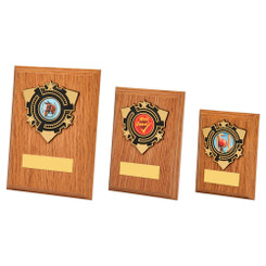 TW20-111-1312CPG / Light Oak Wood Plaque Award