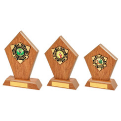 TW20-112-1313CPG / Light Oak Wood Stand Award