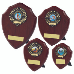 TW20-112-157DPG / Traditional Shield Award