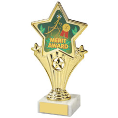 Fun Customisable Star Awards - MERIT