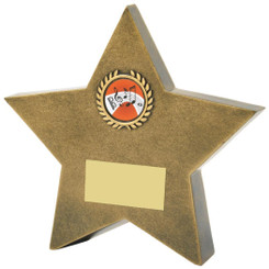 "Antique Gold Resin Star Awads - 13.5cm (5 1/2"")"