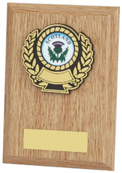 "Light Wood Plaque Award - 13cm (5"")"