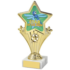 Fun Customisable Star Awards - STAR OF THE WEEK