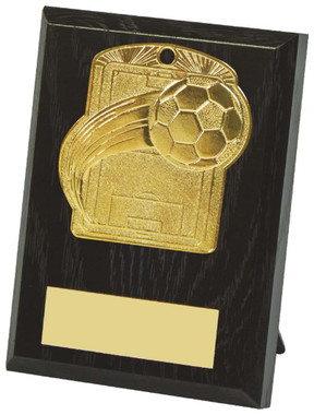 10cm Football Pitch Medal Plaque - TW18-034-533BP