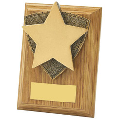 "Light Oak Star Wood Plaque Award - 10cm (4"")"