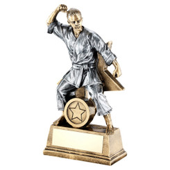 Brz/Gold/Pew Female Martial Arts Figure With Star Backing Trophy (1In Centre) -