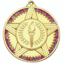 Striped Star Medal With Pink Glitter (1In Centre) - Gold 2In