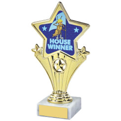 Fun Customisable Star Awards - HOUSE BLUE