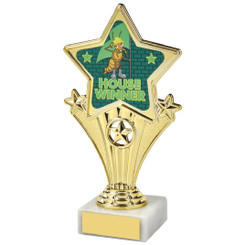 Fun Customisable Star Awards - HOUSE GREEN