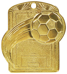 Football Pitch Medal (55mm) - Gold