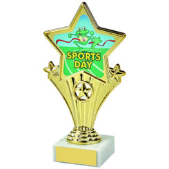 Fun Customisable Star Awards - SPORTS DAY