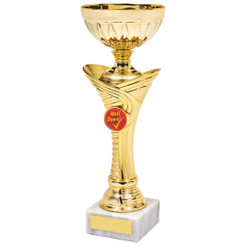 Shiny Gold Trophy Cup - 25cm