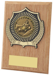 "Light Wood Effect Plaque Award - TW18-099-113DP - 10cm (4"")"