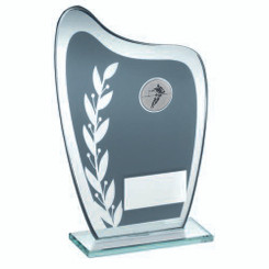 Grey/Silver Glass Plaque With Rugby Insert Trophy - 8In