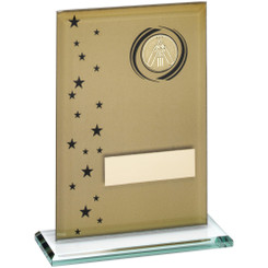 Gold/Black Printed Glass Rectangle With Cricket Insert Trophy - 6In