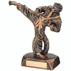 Brz/Gold Resin Karate Figure Trophy - 7.5In