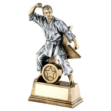 Brz/Gold/Pew Male Martial Arts Figure With Star Backing Trophy (1In Centre) - 7I