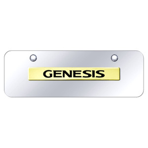 Au-TOMOTIVE GOLD | License Plate Covers and Frames | Hyundai Genesis | AUGD8538