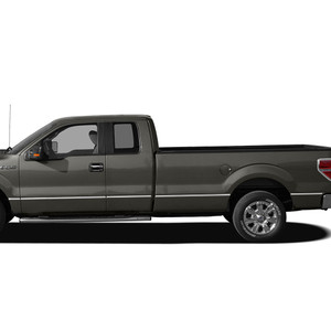 Diamond Grade | Side Molding and Rocker Panels | 09-14 Ford F-150 | SRF1023