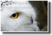 The wise prevail through great power, and those who have knowledge muster their strength. Proverbs 24:5