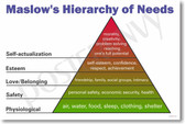 PosterEnvy Exclusive Maslow's Hierarchy of Needs Poster