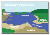Estuary Features - NEW Classroom Science Poster