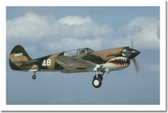 WWII P40 Mustang Aircraft in flight Poster