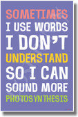Sometimes I Like To Use Big Words - NEW Humor Poster