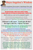 Maya Angelou's Wisdom - NEW Famous Person Poster
