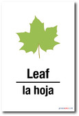 La Hoja - Leaf In Spanish - NEW Foreign Language POSTER