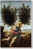 Apollo and Daphne 1470 by Antonio del Pollaiolo - NEW Fine Arts Poster