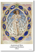 Anatomical Man - Limbourg Brothers - 1415 - NEW Fine Arts Poster