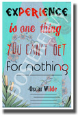 Experience Is One Thing You Can't Get For Nothing - British Author Oscar Wilde - NEW Classroom Motivational PosterEnvy Poster