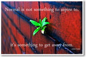 """Normal Is Not Something To Aspire To"" Jodie Foster - NEW Classroom Motivational Inspirational POSTER"