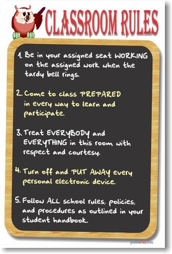 Chalkboard Classroom Rules 4 - Teacher PosterEnvy Poster
