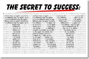 Secret to Success TRY - Motivational Classroom Poster