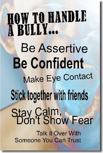 Shouting & Yelling - How to Handle a Bully - Classroom Motivational PosterEnvy Poster